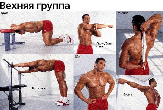растяжка мышц рук.jpg
