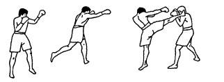 15. Круговой удар правой голенью в голову.jpg