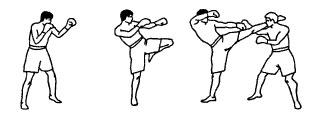 16. Круговой удар левой голенью в голову.jpg